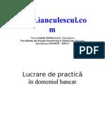 Caiet Practica Finante Banci