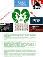 2.-Tema Dos Completo Delincuencia Organizada (2)