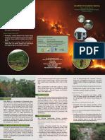 NAPA II Brochure