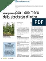 Carpocapsa, i due menu della strategia di lotta di Stefano Bongiovanni Luca Marzocchi