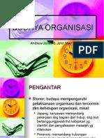 budaya-organisasi.ppt