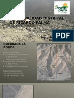 MUNICIPALIDAD DISTRITAL DE RICARDO PALMA.pptx