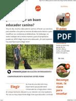 ¿Cómo Elegir Un Buen Educador Canino Affinity Petcare
