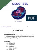 4. Nukleus.pptx