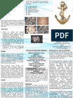 Brochur Puriave