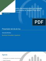 12-3-15 Expanded Polymer Modeling Presentation