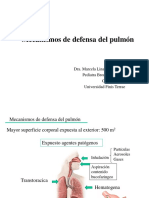 201. M. Linares - Mecanismos de Defensa Del Pulmon