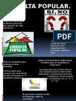 Cabildo Abierto y Consulta Popular