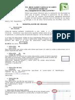 Manipulacion y Formato de Celdas EXCEL