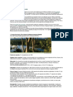 ÁREAS PROTEGIDAS DE BOLIVIA.docx