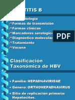 Hepatitis B- Jornadas