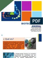 BIOTECNOLOGÍA-ANIMAL.pptx