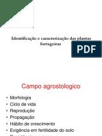 Identificação e Caracterização Das Plantas Forrageiras Aula 2