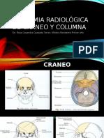 Anatomia radiológica de cráneo y columna.pptx