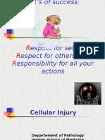Cellinjury conviuerta