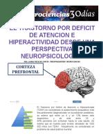 Tdah Desde Una Perspectiva Neuropsicologica