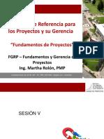 Fundamentos_proyectoss5Y6