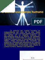 El Asombroso Cuerpo Humano1