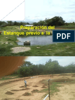 diapositivas evidencias