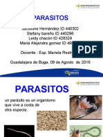 DIAPOSITIVAS PARASITOS.ppt