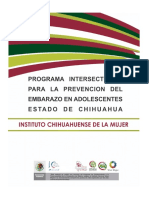 PPEA.pdf