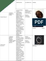 parasitologia laboratorio Nematodos