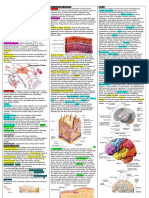 Anatomy One Pager G&a (3)