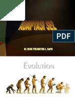 New Adaptasi Sel
