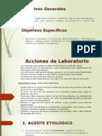 Acciones de Laboratorio.pptx