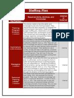 final iv staffing plan 1