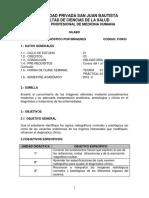 Silabo Diagnóstico Por Imagenes 2016-II