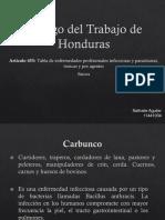 Tabla de Enfermedades Profesionales del Código de Trabajo de Honduras