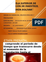 etapaprenatal_2