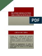 2._Transformaciones_Organizacionales