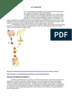 clonacion_alumnos.pdf