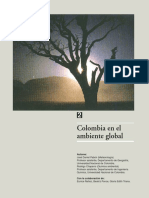 colombia en el ambiente global