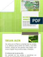 ECOSISTEMAS AMAZONICOS