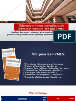 Secciones 24 y 25 Niif Pymes