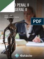 Livro Proprietário – Direito Penal II