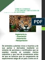 CITES.pdf