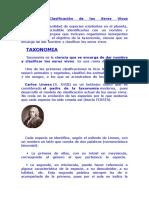 Taxonomía Clasificación de Los Seres Vivos
