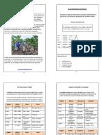 99863438-Separata-Ocho-Regiones-Naturales.pdf