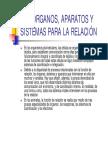 tema 8_3.pdf