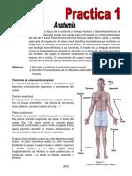 Practica de pa 2015 01 Anatomia.pdf