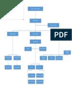 Standard Org Chart