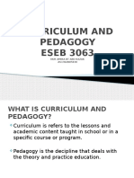 Curriculum and Pedagogy theory
