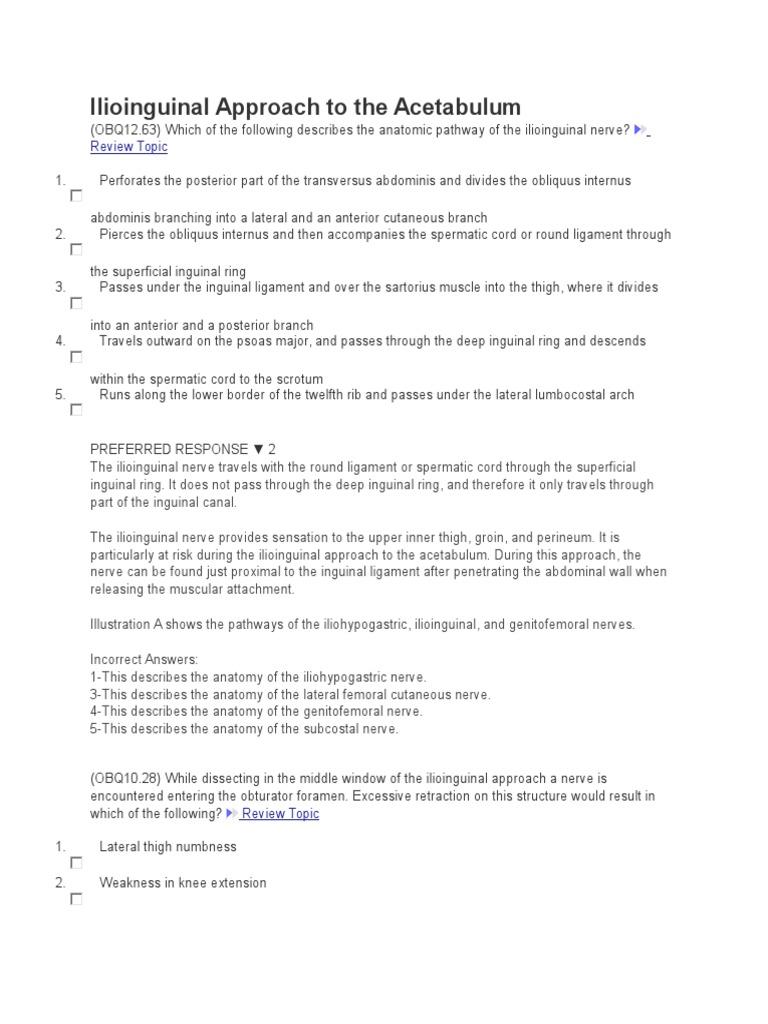 Ilioinguinal Approach to the Acetabulum | Lower Limb Anatomy | Human ...