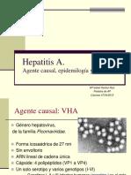 Hepatitis_A.pdf