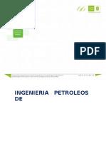 IPR 2 Fases Metodo de Fetkovich