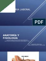 AUDIOMETRIA 1.pptx
